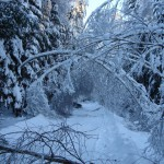 Так выглядела дорога на утро 04 января 2011