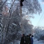 07 января 2011г. территория СНТ «Восход-2″. Очистка линии электропередач от деревьев и веток.
