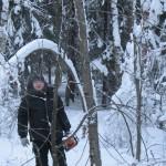 icy_trees_054